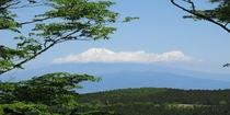 天城ハイキングコースからの富士