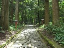 日本一長い自然石の石畳