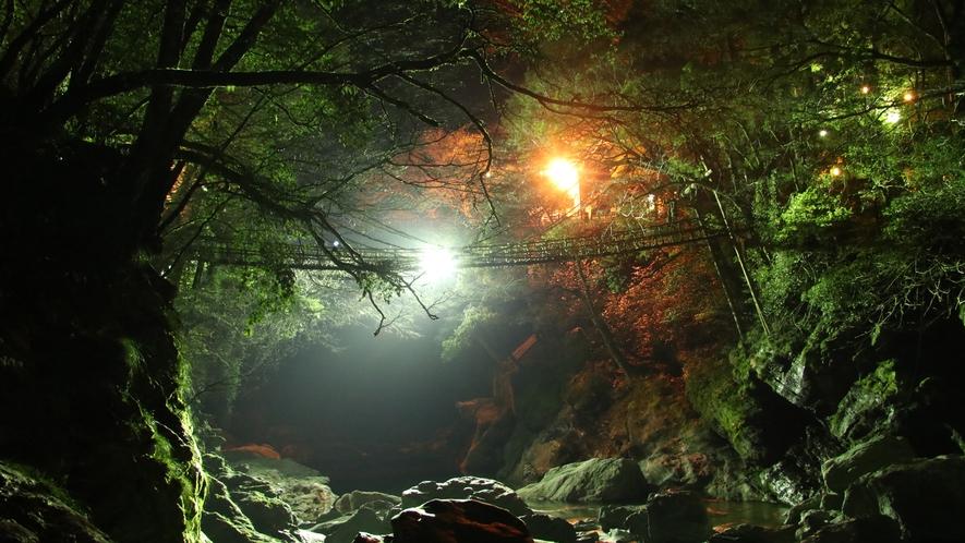 ☆夜のかずら橋は幻想的です