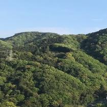 閑静な高台に佇むグリーンパル湯河原
