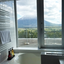 ペントハウスバスルームからの景色.jpg