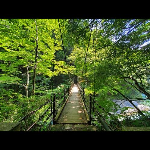 【絶景スポット】当館から徒歩1分のつり橋