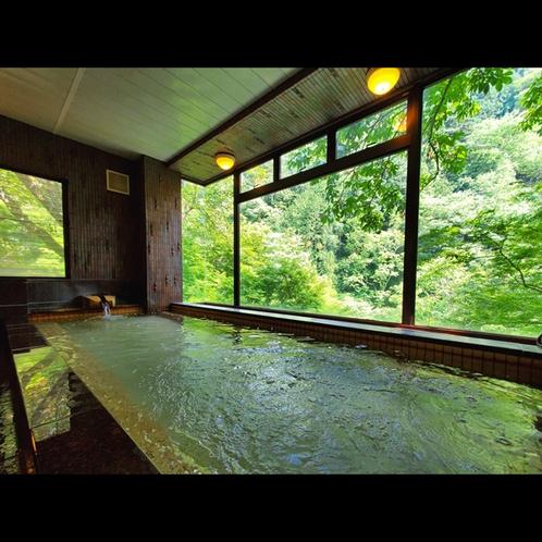 開放的な窓から望む一面の緑と温泉でゆったりとしたひとときを。