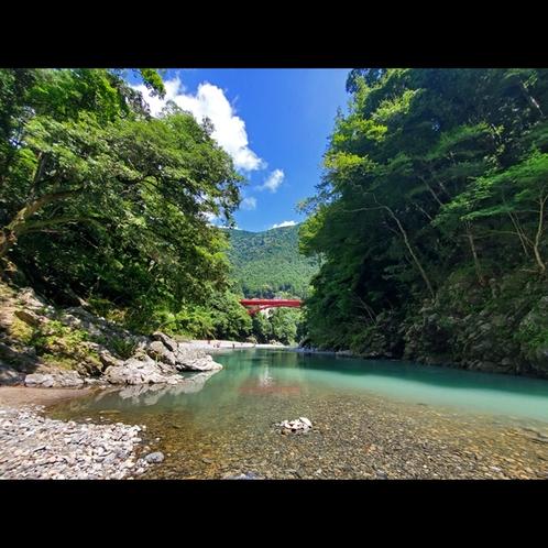 夏には多摩川で川遊びが楽しめます!