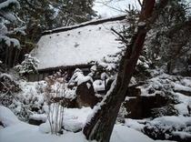 雪の合掌造り(25年12月22日撮影)
