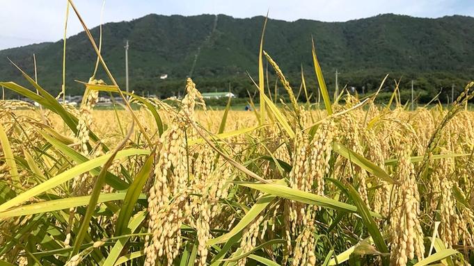 【1泊2食付き】琵琶湖でSUP体験ができちゃう!?初心者大歓迎当館の旦那が丁寧に教えます♪