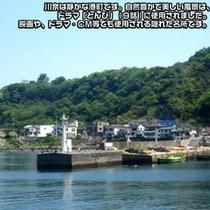 川奈の美しさは自然と静かな港です。