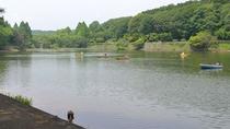 「ボート魚釣り」、「自然散策」が楽しめるファミリーパーク。宮沢湖