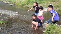 裏手の小川はお子様の水遊びにもぴったり