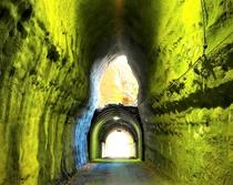 養老渓谷不思議トンネル