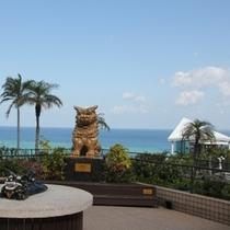 東シナ海を望む絶景が広がります。
