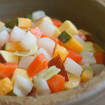 ワンちゃんポトフ:玉ねぎ以外のキャベツ、人参、サツマイモ等野菜のみ