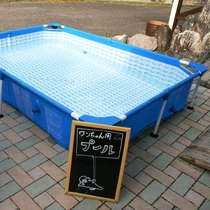 夏にはワンちゃん用プールもご用意しております