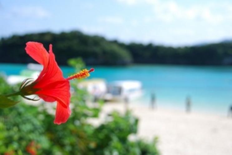 石垣島の川平湾の風景
