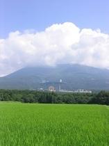 夏の那須高原