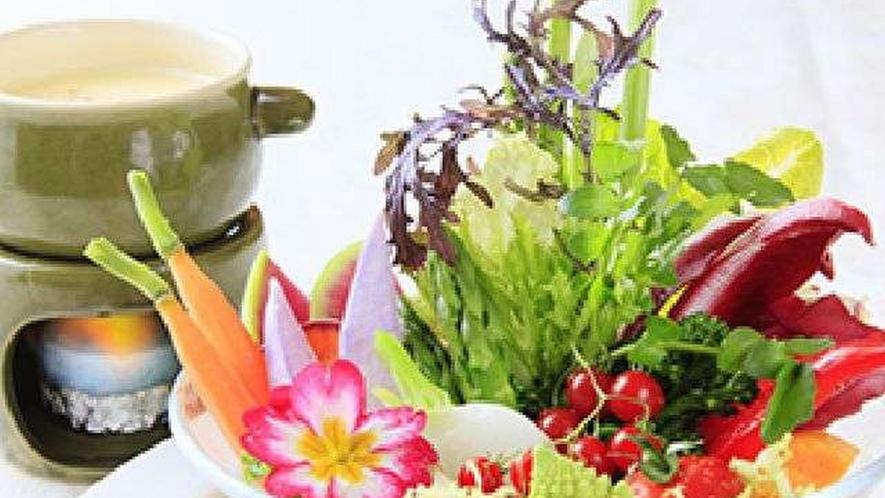 ◆神奈川三浦の契約農家の野菜のバーニャカウダー