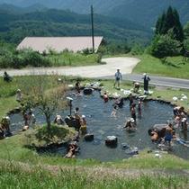 夏は人工池で水遊びやアマゴのつかみ取りが楽しめます。