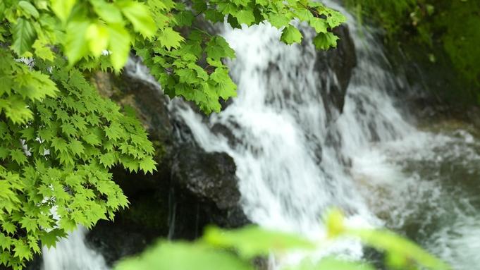 【貸切風呂でのんびり】プライベートな個室風呂で温泉満喫プラン/和食膳