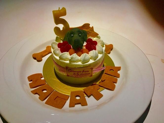 わんちゃん用バースデーケーキ