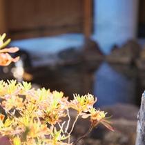 【風呂】露天風呂 傍らに優雅に泳ぐ錦鯉を眺めながら入浴できる庭園露天風呂