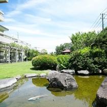お庭の池には鯉も泳いでます