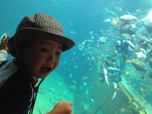 【♯箱根応援旅】【遊】◆箱根園水族館入場券付・ファミリープラン!お子様にプレゼント付♪