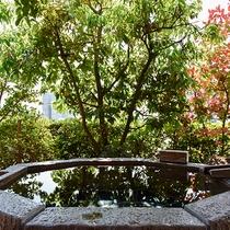 *【露天風呂・スーペリア桜】手入れが行き届いた小さなお庭の中で湯浴みをお楽しみください
