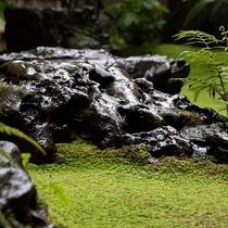 *【1F中庭】ロビーに面した中庭は大切に育ててきた苔の緑と木々や銘石との調和をお楽しみいただけます。