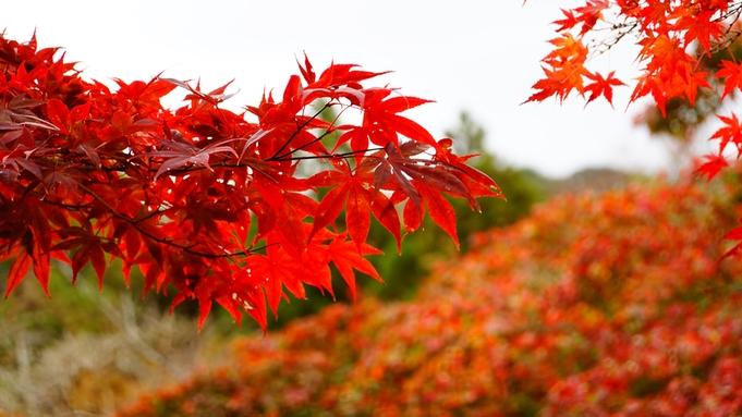 ★撮影後のお食事OK!★秋めく裏磐梯は撮影スポットいっぱい!色彩豊かな山々と湖沼を写真に♪《2食付》
