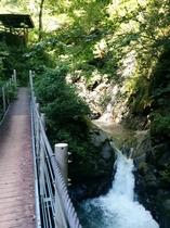遊歩道(観音橋)