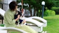 【ジャランジャラン(屋外)】愛犬と寛ぐ素敵な時間。