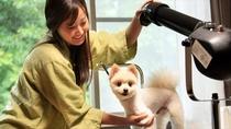 【グルーミング室】普段は出来ない愛犬のお手入れも♪もちろんすべて無料です。