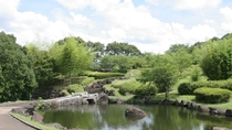 北薩広域公園:当館よりお車で約18分。かぐや姫の里竹林公園は幻想的な雰囲気です。