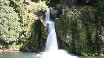 観音滝公園:当館よりお車で約24分。観音滝から聞こえる滝の音が癒してくれます。