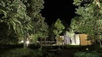 【紫尾庵】夜間:各部屋からのアプローチ。ライトアップされた、母屋へと続く小道。
