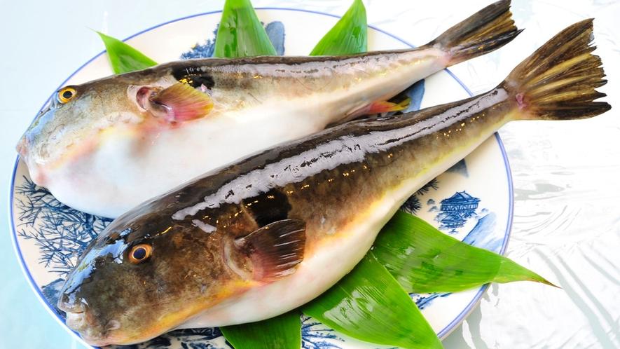 *岬御膳ふぐ鍋コース/初山別の特産、前浜産の天然真ふぐを使った美味しいふぐをお楽しみください!