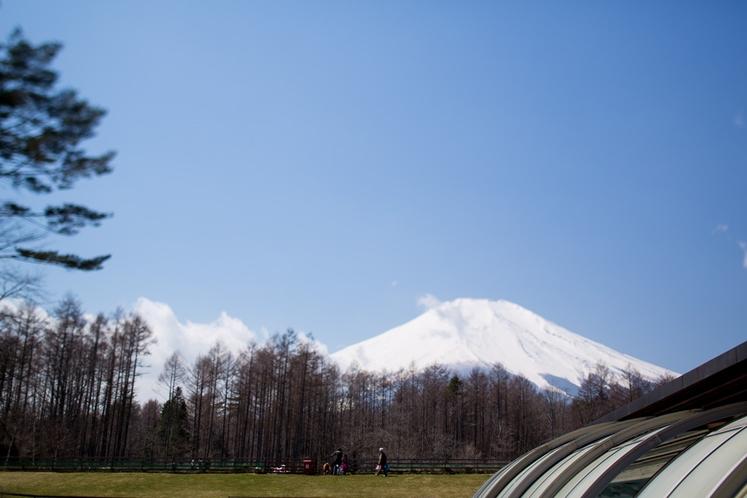 富士山が目の前!