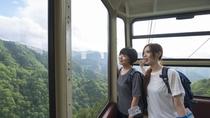 【天元台ロープウェイ】空中散歩で絶景をたのしむ