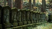 【白布三十三観音】一カ所に集めた石造野立の三十三観音様を巡礼(徒歩15分)