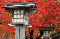 土津神社 紅葉
