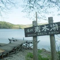 *【周辺】信州・青木湖/暑い時期には湖水浴もおすすめ!