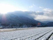 大原の雪景色