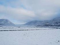 大原 雪景色
