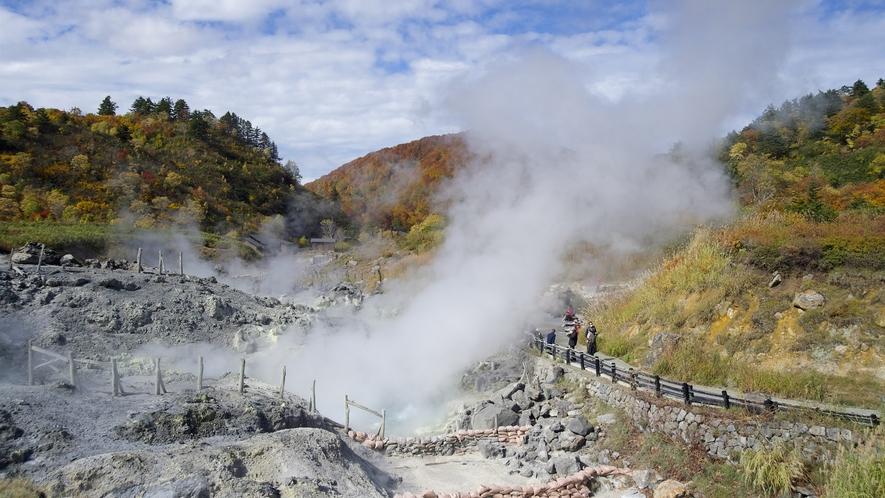【自然研究路】たくさんの噴気孔があり、通常とは異なる世界があるようです