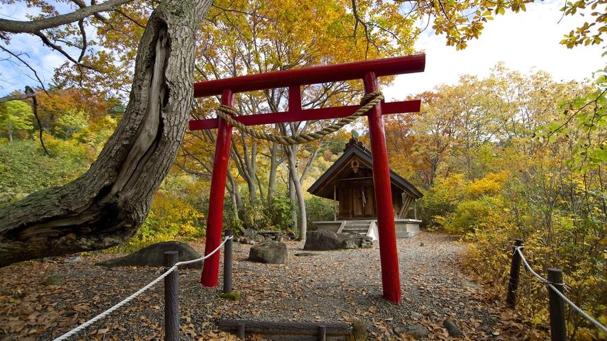 【玉川温泉薬師神社】自然研究路内には病気平癒を祈願した玉川温泉薬師神社があります。