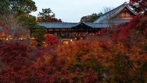 晩秋の東福寺通天橋