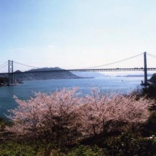 桜と関門海峡.jpg