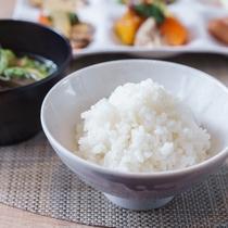 石川県小松市産の特別栽培米こしひかりを使用した美味しいご飯!