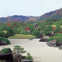 足立美術館 秋の庭園1