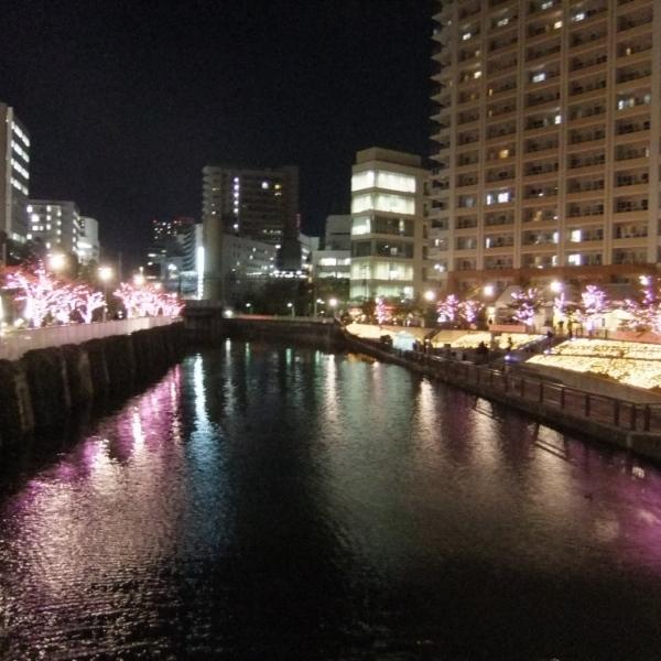 【600600】目黒川みんなのイルミネーション2012 目黒川